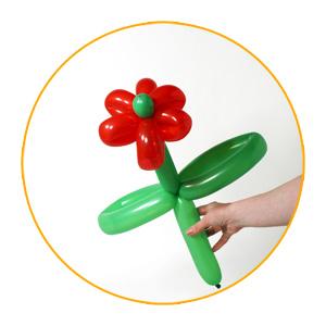 Decoracion Con Globos Como Hacer Una Flor De Globos Moldeables - Como-hacer-flores-de-globos